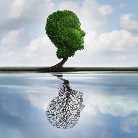 Mentaltraining & Psychotherapie